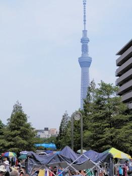 大横川親水公園(フリーマーケット).jpg