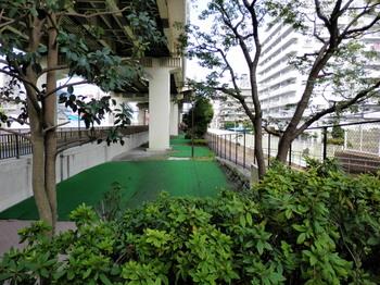 竪川河川敷公園(パターゴルフ場北側).jpg