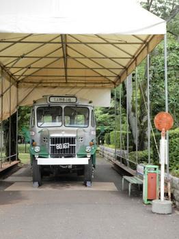 いすゞTSD43型ボンネットバス.jpg