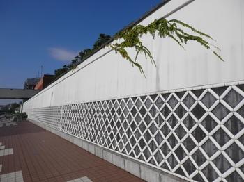 なまこ壁1.JPG