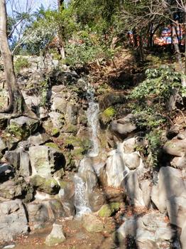 もみじの滝(芝公園).jpg