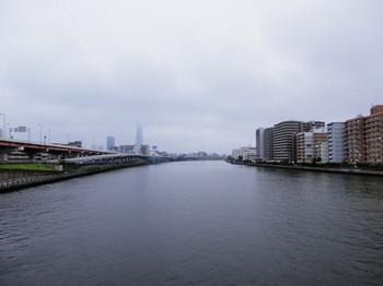 スカイツリー(白鬚橋).jpg