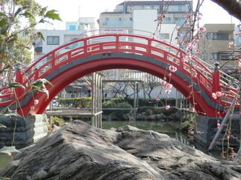 亀戸天神(男橋)3.jpg