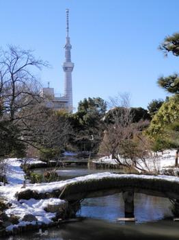 向島百花園雪景色.jpg