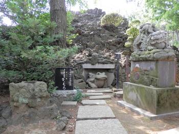 品川神社(ぶじかえる).jpg