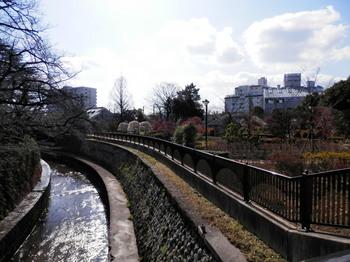 哲学堂公園.jpg