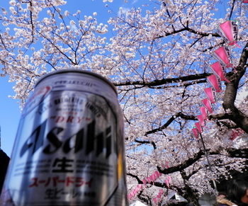 墨堤桜まつり(花見酒)地点1.jpg
