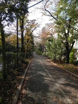 大島緑道公園.JPG