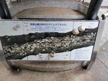大森貝塚遺跡庭園6.jpg