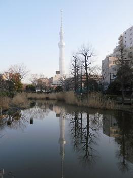 大横川親水公園.JPG