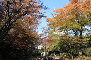 大横川親水公園1.JPG