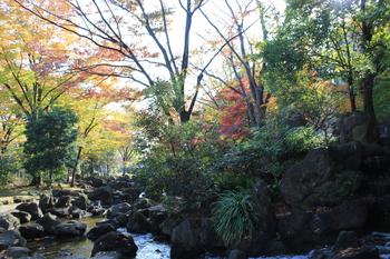 大横川親水公園4.JPG