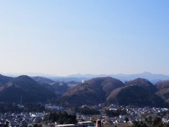 天覧山山頂からの眺望.jpg