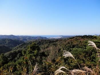 太平山(相模湾).jpg