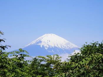 富士山(乙女峠展望台).jpg