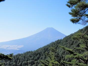 富士山(股のぞき).jpg