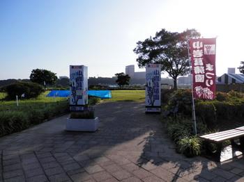 小岩菖蒲園まつり.jpg