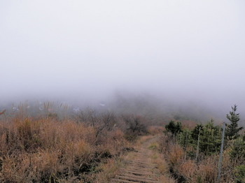 平尾山頂から縦走中.jpg