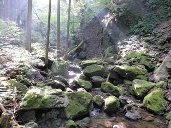 御前山(登山道).jpg