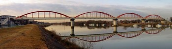 新中川水管橋.jpg