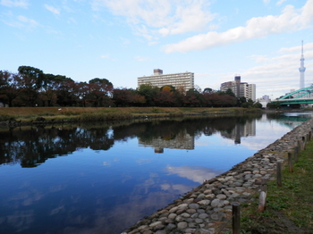 旧中川.JPG