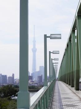木根川橋とスカイツリー.JPG