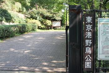 東京港野鳥公園.JPG