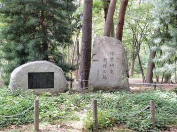 林試の森公園(林業研究発祥の地).jpg