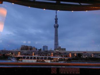 桜(夜桜船から)2.jpg