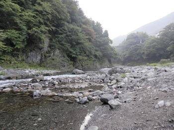 氷川キャンプ場(多摩川の河原2).jpg