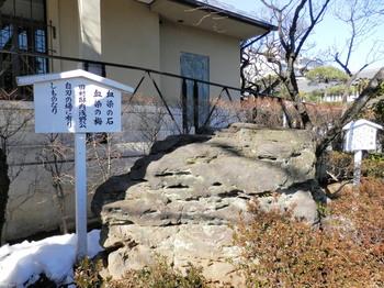 泉岳寺(血染めの石).jpg