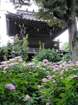 白山神社(白山公園側から).jpg