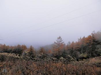 石割山頂(視界不良).jpg
