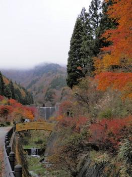 石割神社赤い鳥居の前.jpg
