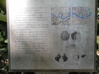 石神井川の今昔.jpg