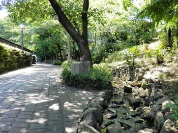 緑道(石神井川コース).jpg
