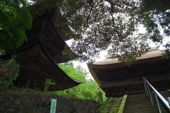 西明寺1.JPG