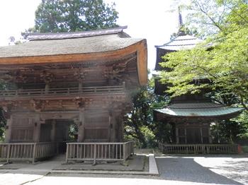 西明寺2.JPG