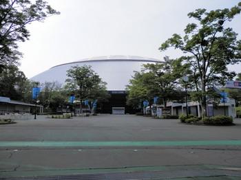西武ドーム球場.jpg