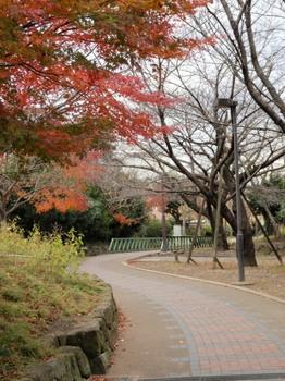 赤羽緑道公園1.jpg