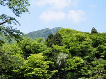 金時山(金時神社入口から).jpg