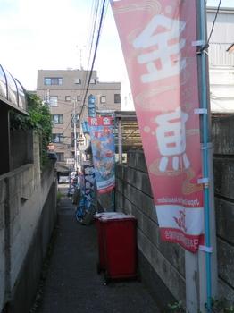 金魚坂3.JPG