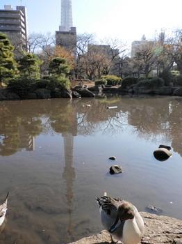 隅田公園1.jpg