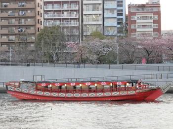 隅田川(桜と花見船).jpg