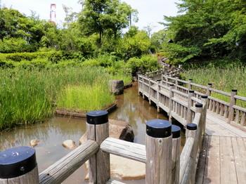 青海南ふ頭公園2.jpg