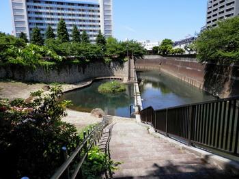 音無緑地と石神井川.jpg