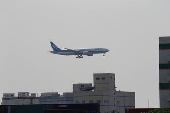 飛行機(羽田空港).JPG