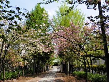香取神社2.jpg