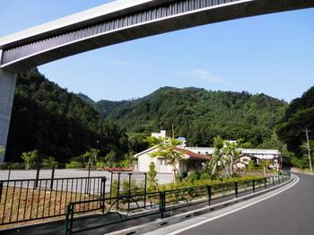 高尾山(圏央道下から).jpg