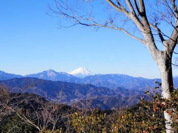 高尾山(山頂)2.jpg
